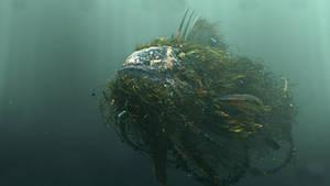Jonah Fish model