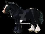 Oil Horse.