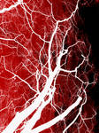 Blood and Trees Texture