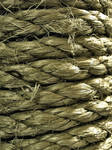 Rope Texture 01