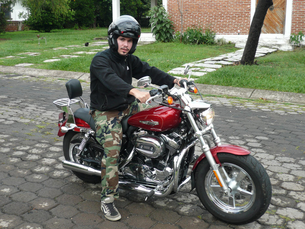 Harley Davidson Sportster 1200 2013 by Jmalpica
