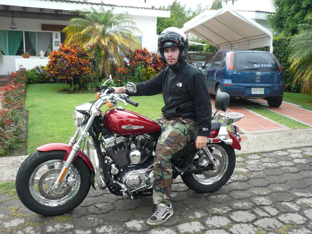 Harley Davidson Sportster 1200 2013 - 2 by Jmalpica