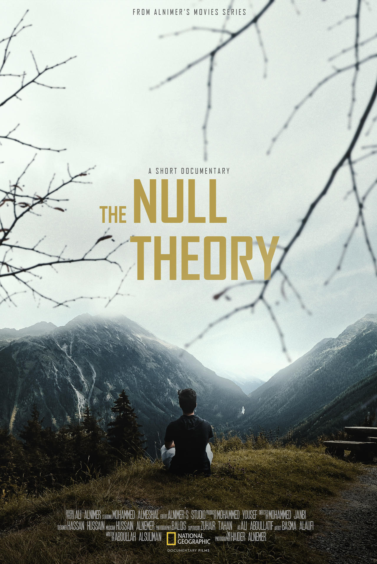 The Null Theory (Imaginary Movie Poster)
