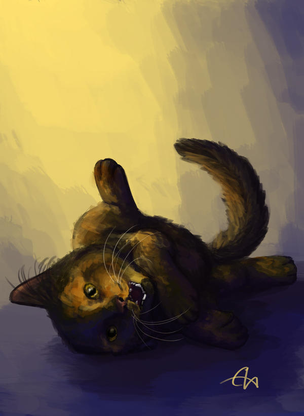 My cat by temary44