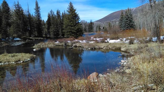 Aspen Center For Environmental Science