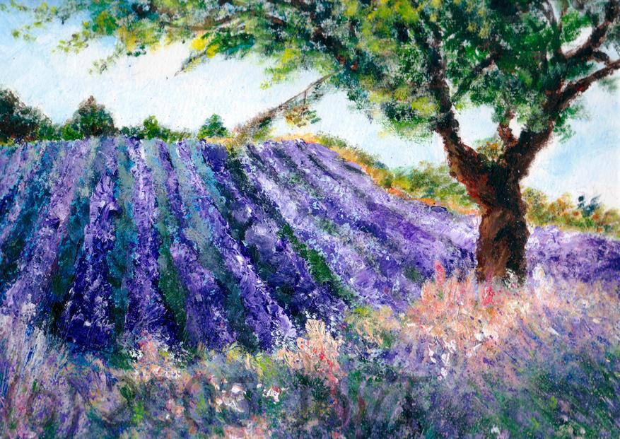 Lavender Field by JoyT