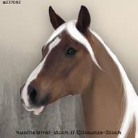 Untitled-2 300x300 by UnicornBaconBuns