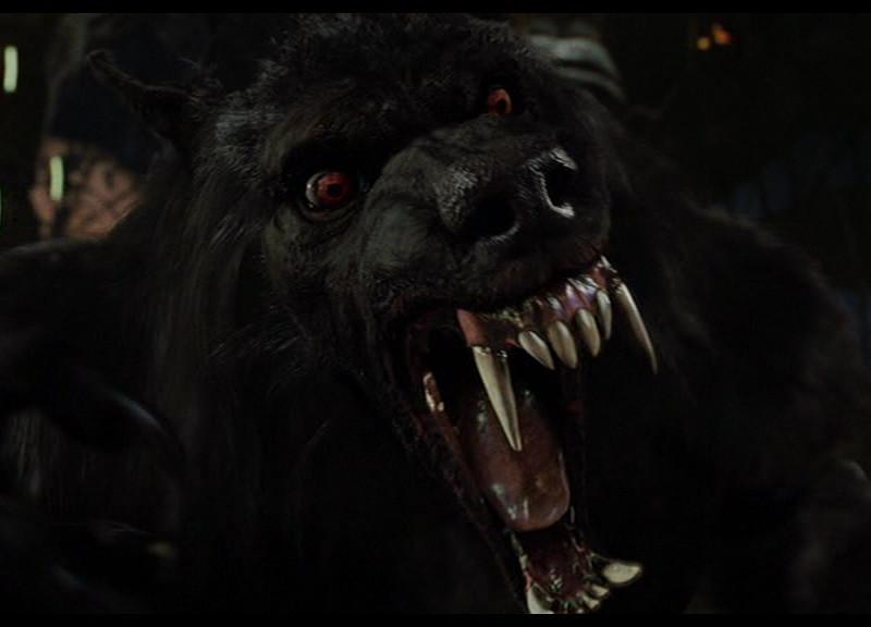 Werewolf by Sapphiresenthiss on DeviantArt