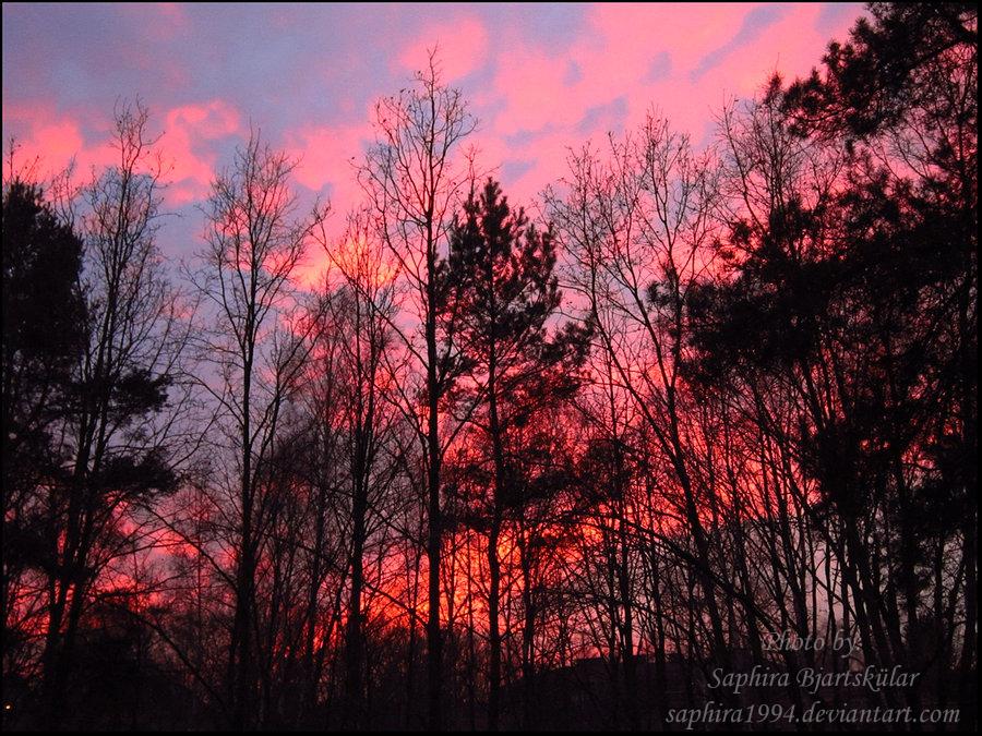 Sunset by Sapphiresenthiss