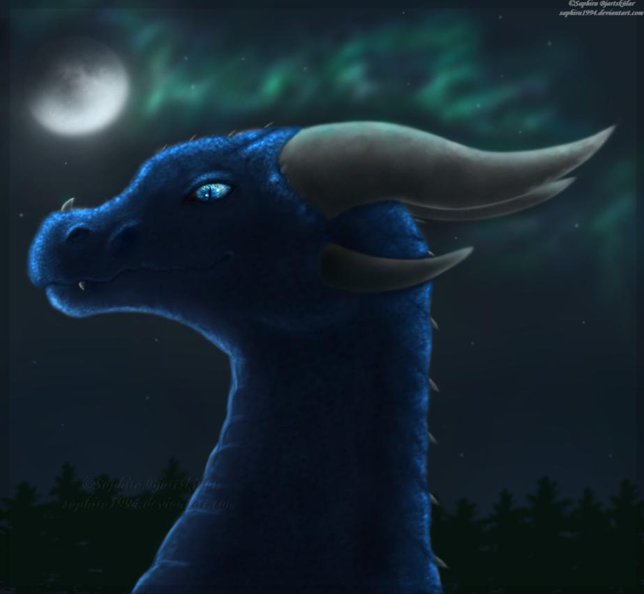 Aurora Night by Sapphiresenthiss