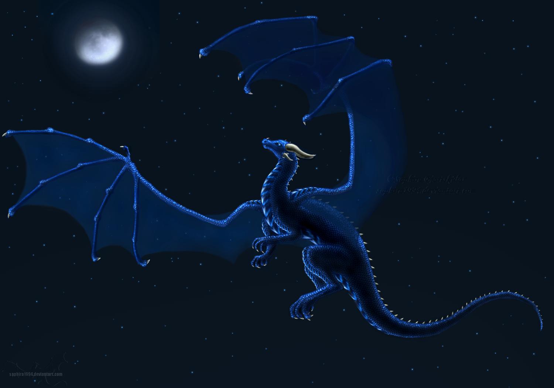 Night Flight by Sapphiresenthiss