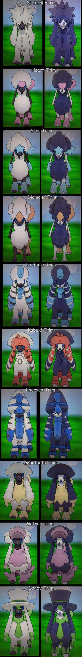 Pokemon XY - All Furfrou Trims! (Normal + Shiny) by Sapphiresenthiss on DeviantArt