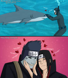 Sharks DO Enjoy Petting! by Sapphiresenthiss