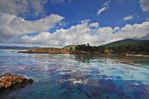 Whalers Cove by ernieleo