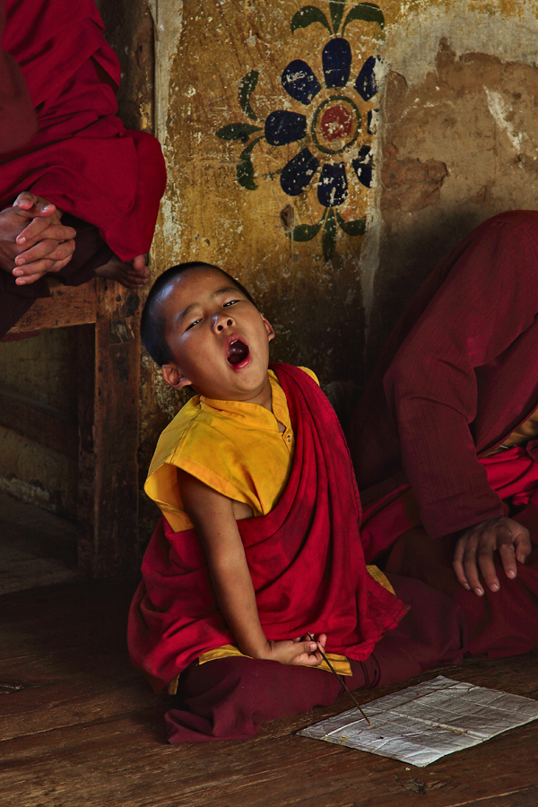 Yawn...... by ernieleo