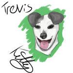 Trevis