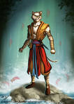 Commissioned work - Tabaxi monk