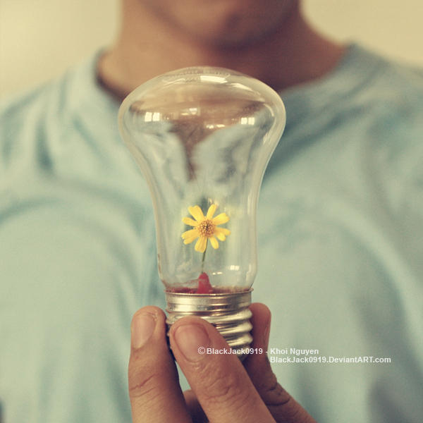 Light Up Your Inspirations