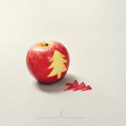 Hidden Christmas by BlackJack0919
