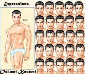 Expressions: Visual Novel doll by OokamiKasumi
