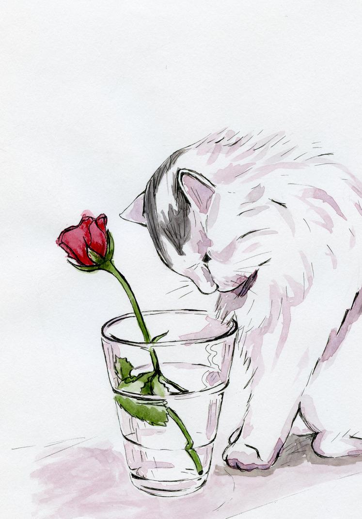 Ti regalero una rosa by cchersin