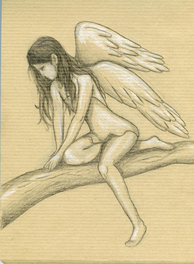 Wings by cchersin