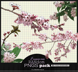 Random PNGS Pack 14 by NagaSahara