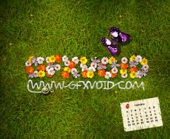 Flower : GV Feb Desktop Comp