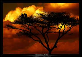 Sunset Boulevard by Tonyryna