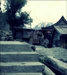 Way back home I