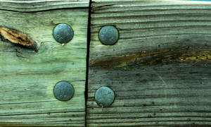 Wood with Nails IV by Delia-Stock