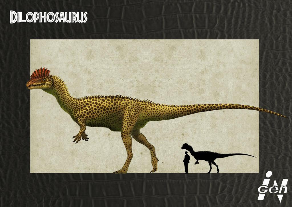 http://fc08.deviantart.net/fs71/i/2012/262/8/0/jp_dilophosaurus_remake_by_jelsin-d5eosr2.jpg
