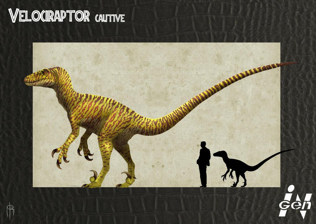 Visualize the Novels  Jp_cautive_raptor_remake_by_jelsin-d5epoau