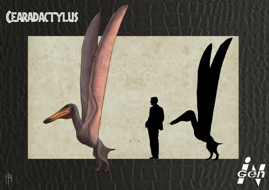 http://fc05.deviantart.net/fs71/i/2012/269/e/3/jp_cearadactylus_remake_by_jelsin-d5fzqut.jpg