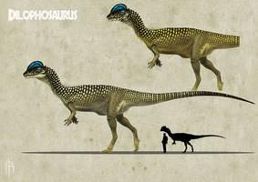 Dilophosaurus color experiment 3 A by JELSIN
