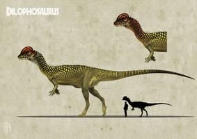 Dilophosaurus color experiment 3 B by JELSIN