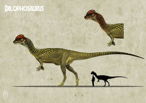 Dilophosaurus color experiment 3 B