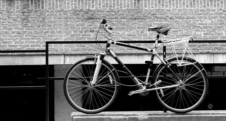 Cycle by AbdoHad