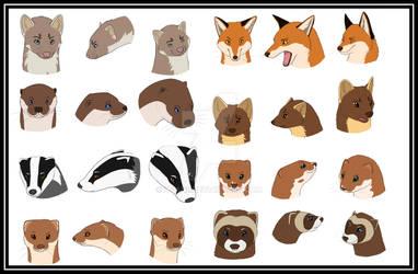Dutch Mammals part 1 by Avanii