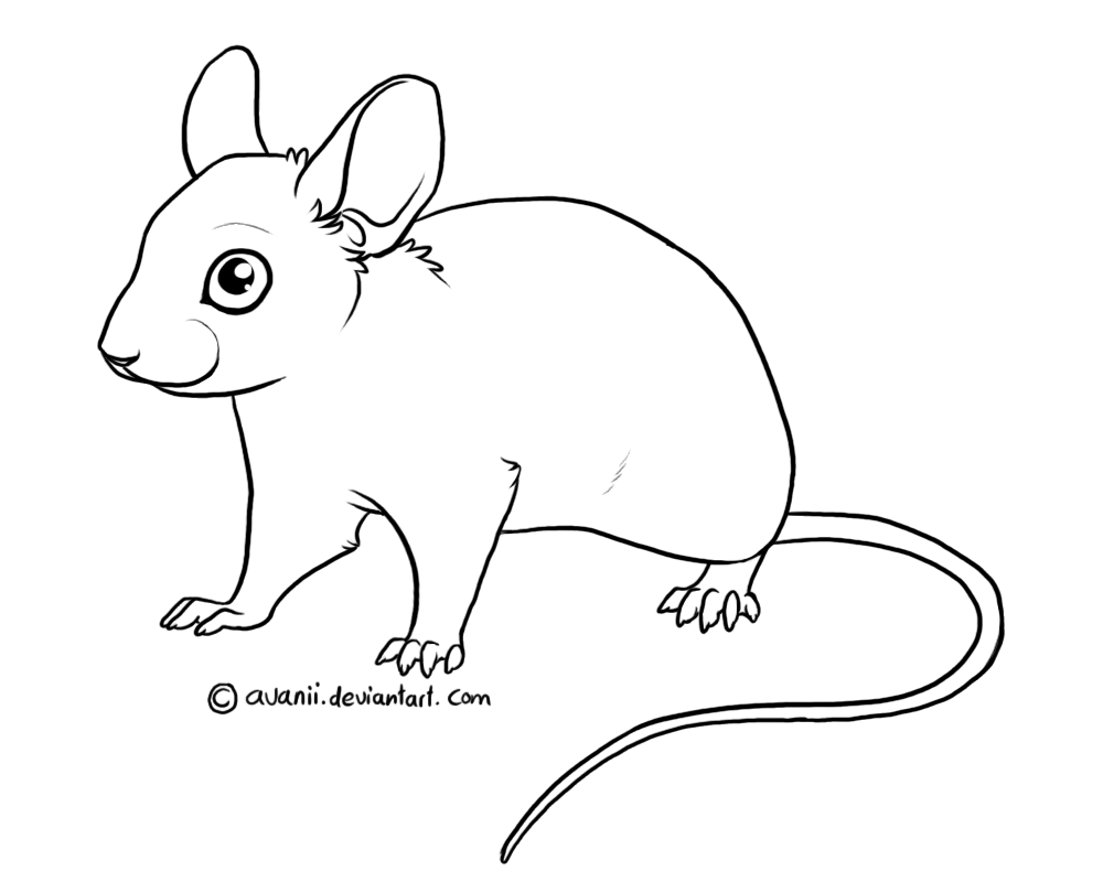 Line Art Mouse : Free lines mouse by avanii on deviantart