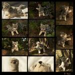 Plushie: Faolan the wolf