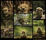 Plushie: Arthur the Bear