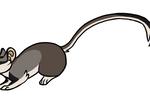 Morty running :animation: by Avanii