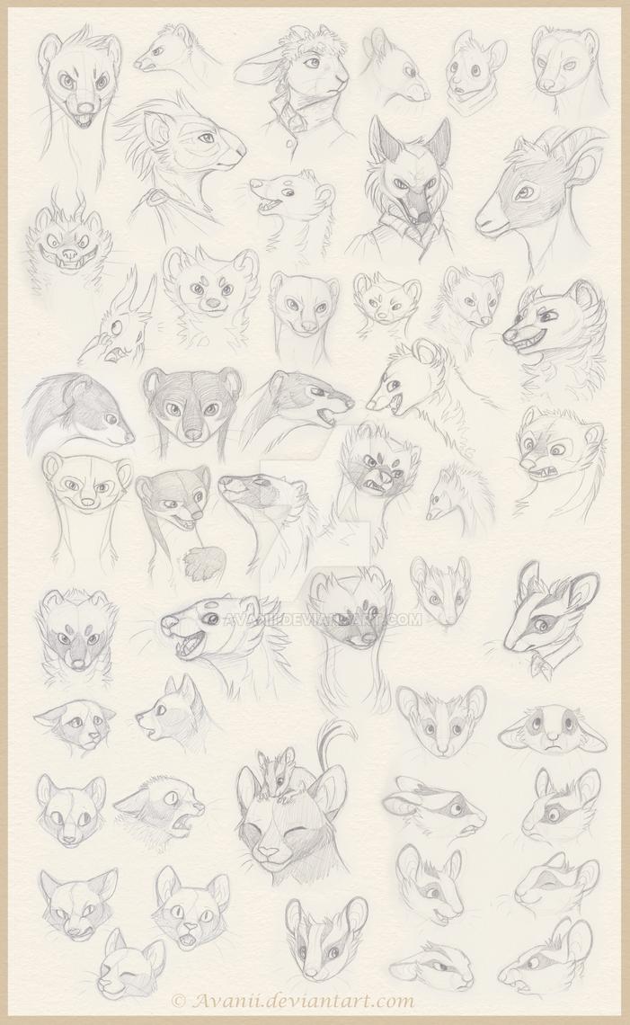 Sketchdump: Animal OC Portraits by Avanii