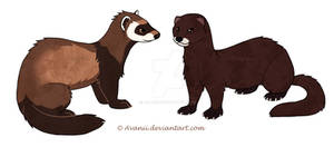 Ferret and Mink Stickers