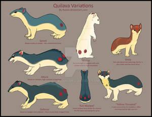 Quilava Variations