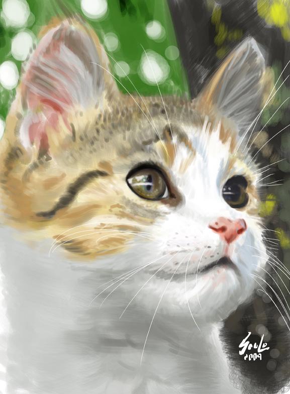 cat study by saulom