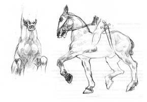 Equine studies by redwattlebird