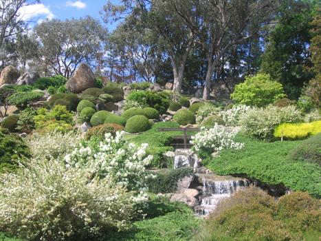 Cowra Japanese Garden No.1