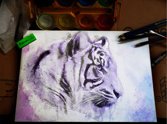 Wildlife: Tiger by Deboir